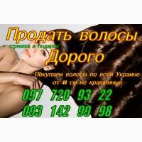 Продать волосы, куплю волосы дорого Днепр Киев Харьков Одесса