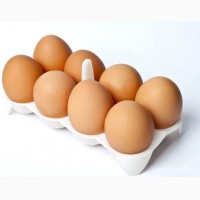 Куриные яйца (сорт С1) на экспорт
