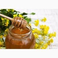 Купим дорого мед с рапса