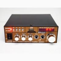Усилитель BM AUDIO BM-606BT USB Блютуз 300W+300W 2х канальный Караоке