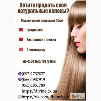 Куплю волосы в Харькове в день обращения