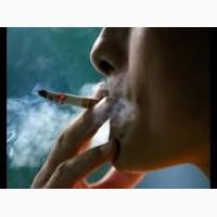 Продам табак 100% натуральный без химии и мусора, !!Гильзи Машинки Портсигари