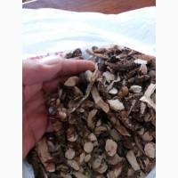 Продам коринь АИРА сухим и мокрим