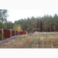 Продам эксклюзивный участок у леса пгт. Глеваха центральная (Киев.обл)