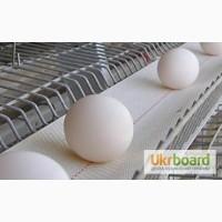 Высококачественная лента яйцесбора ЛТ-100 ЛТ-250 ЛТ-300
