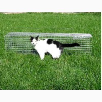 Безопасная котоловка. Клетка- ловушка для котов. Поймать кота. Живоловка для кошек
