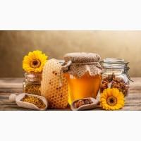 Купим очень дорого прошлогодний мед