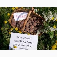 Купить семенной картофель Ривьера, Бела Роса и др. почтой ( картошка )