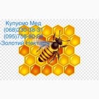 Покупаем мед 2021 в Березнегуватом Николаевской области