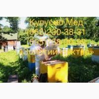 Оптовая закупка меда Апостолово и соседние районы