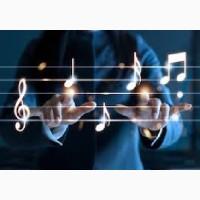 Музыкант, Вокалист, DJ, Тамада на свадьбу, банкет. Живая музыка, индивидуальный подход