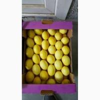 Распродажа лимонов