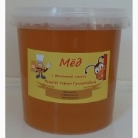 Продаю мёд подсолнечный