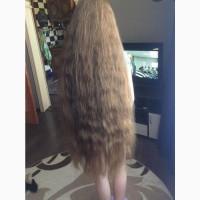 Якщо ви вирішили попрощатися з волоссям, ваше волосся можна вигідно продати в Ужгороді