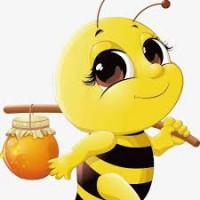 Куплю дорого мед с рапса и акации