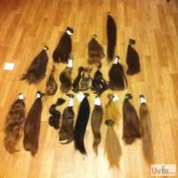 Покупаем волосы в Одессе, фото нам оценка высокая Одесса куплю волосы скупаем волосы