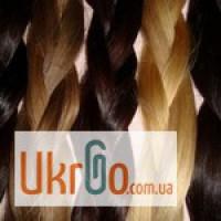Покупаем волосы Харьков, скупка волос Харьков, продать волосы Харьков, купим волосы