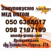 Закупівля меду оптом АМЕДА ГРУП ТМ, Кіровоградська та прилеглі обл-ті