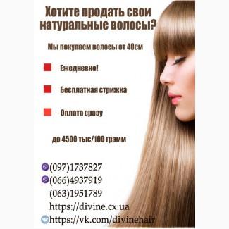 Куплю волосы дорого, скупка волос в Харькове, продать волосы, купим волосы