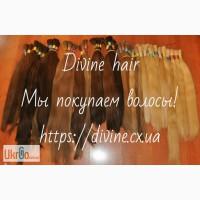 Купим волосы. Продать волосы в Харькове