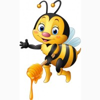 Куплю мед с рапса и акации. Дорого